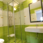 Ikion hotel standard double room shower