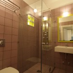 Ikion hotel superior twin room shower